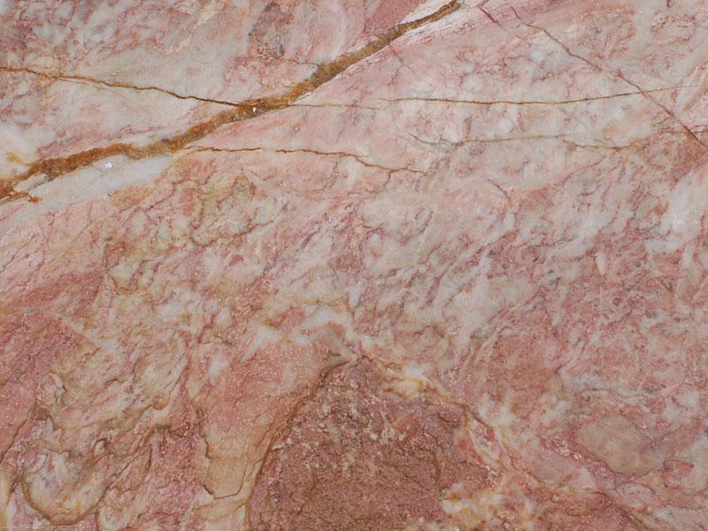 Devonian_Pink_limestone_close_up