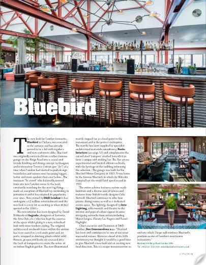 GS Magazine_Blurbird